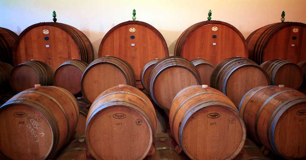 The best wine areas in Tuscany